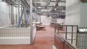 poliuretano cemento (1)